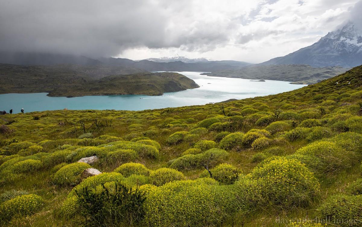 patagonia-382