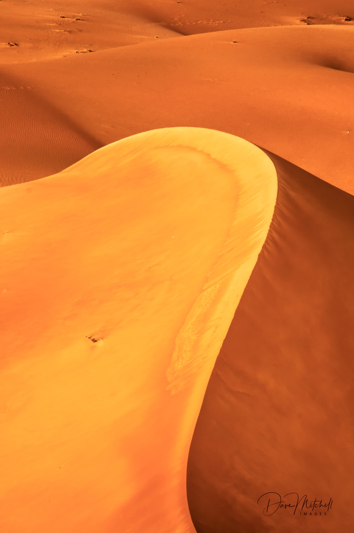 Red Dunes ... Al Ain ... UAE.